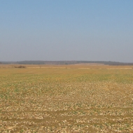 swiete-widok-2