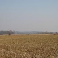 swiete-widok-4