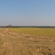 swiete-widok-6