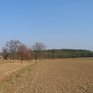 swiete-widok-8