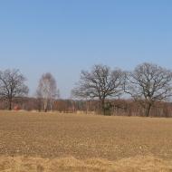 swiete-widok-9
