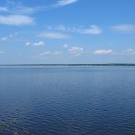 szczedrzyk-jezioro-turawskie-01