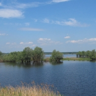szczedrzyk-jezioro-turawskie-06
