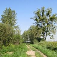 szymanow-szewce-09