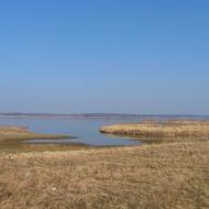 taciszow-jezioro-dzierzno-duze-1