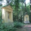 trzebnica-las-bukowy-05
