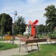 trzebnica-ul-lesna-13