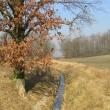 tyniec-maly-biskupice-podgorne-05