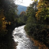 ustron-jaszowiec-potok-jaszowiec.jpg