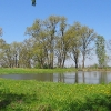 wiazow-dawny-basen