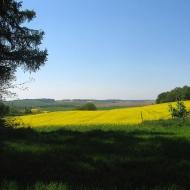 widok-zachwyt-4