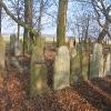 wielowies-cmentarz-zydowski-4
