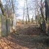 wielowies-cmentarz-zydowski-5