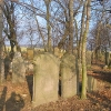 wielowies-cmentarz-zydowski-6