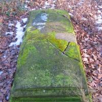wilczyn-dawny-cmentarz-2.jpg