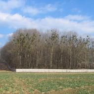 wilkowice-palac-park