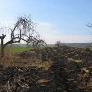 winna-gora-szlak