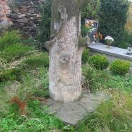 wiry-kosciol-kamienne-drzewo