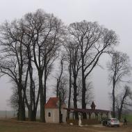 wisnicze-kaplica-w-goju-3
