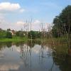wodzislaw-staw-ul-piaskowa-1