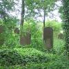 wolczyn-cmentarz-zydowski-2_0