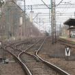 wolow-ul-lesna-przejazd-05