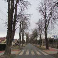 wolow-ul-lesna-01