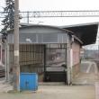 wolow-stacja-19