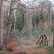 wrzosy-stawy-wydmy-06