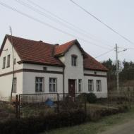 wrzosy-04