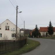 wrzosy-14
