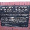 zywiec-ul-stolarska-cmentarz-zydowski-1
