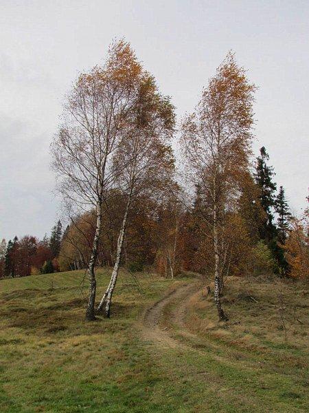 img_1581