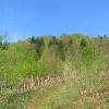 zatwarnica-dolina-rzeki-widok-2