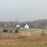zawonia-ul-lesna-2