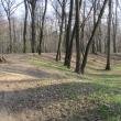zlotniki-park-zlotnicki-grodzisko-04