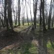 zlotniki-park-zlotnicki-grodzisko-06