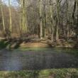 zlotniki-park-zlotnicki-02