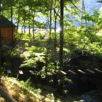 zloty-stok-lesny-park-przygody-skalisko-4.jpg