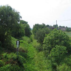bluszczow-stacja-2