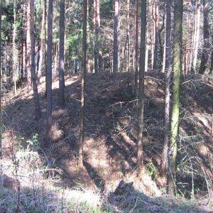 grochowiec-pozostalosci-fortow-3