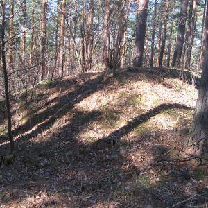 grochowiec-pozostalosci-fortow-5