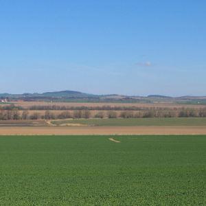 grochowiec-widok-na-wzgorza-bielawskie-1