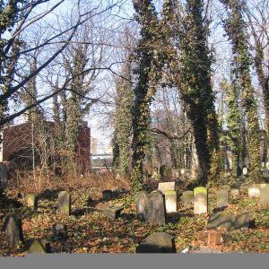 gliwice-stary-cmentarz-zydowski-3