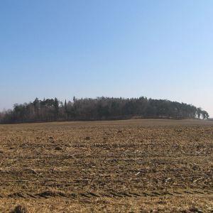 poniszowice-widok-sznurowa-gora-1