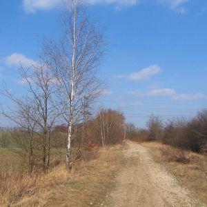 kamieniec-stacja-2