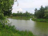 broszkowice-starorzecze-2
