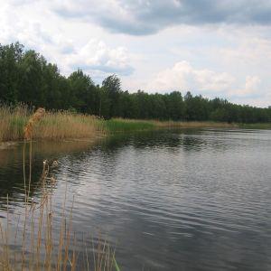 janislawice-stawy-2