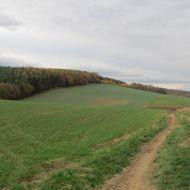 ruszkowice-za-1