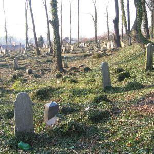 cieszyn-stary-cmentarz-zydowski-1